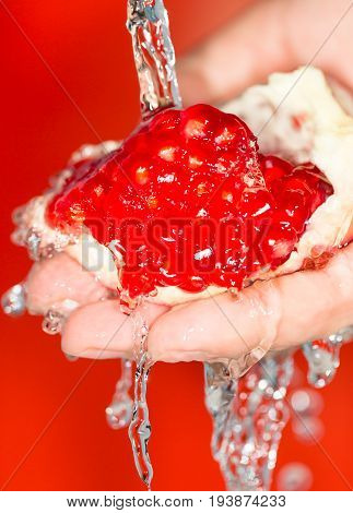 Ripe red pomegranate in her hand in water .