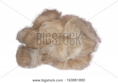 Cat red-haired wool isolated on white background