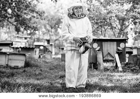 Monochrome full length shot of a senior beekeeper in beekeeping suit standing outdoors in the garden.