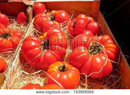 Ox-heart Or Bull's Heart Tomatoes Sold At Local Market. France