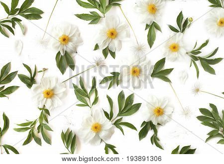 Floral pattern made of white peony flowers green leaves and pasque-flower seeds on white background. Top view flat lay.