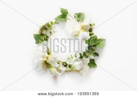 Wedding concept. Fresh Iris white flowers buds and green ivy branches on white background. Flat lay top view.