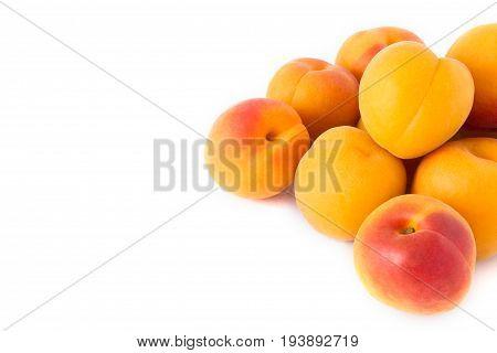 Reife Aprikosen, isoliert auf weiß, rechts angeschnitten