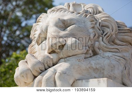 Marble sculpture of a sleeping lion, close-up portrait