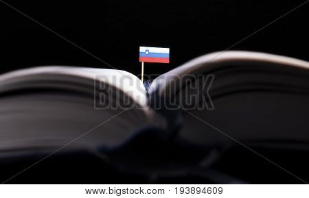 Slovenian Flag In The Middle Of The Book. Knowledge And Education Concept.