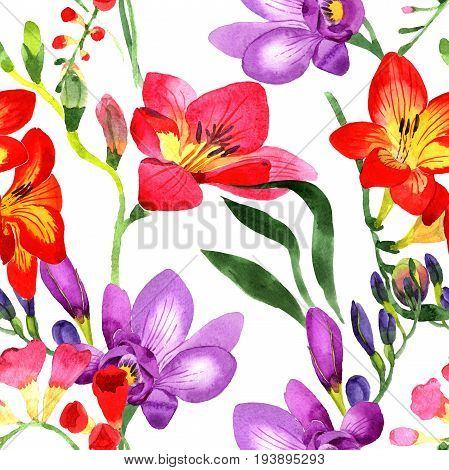 Wildflower fresia flower pattern in a watercolor style. Full name of the plant: fresia. Aquarelle wild flower for background, texture, wrapper pattern, frame or border. poster