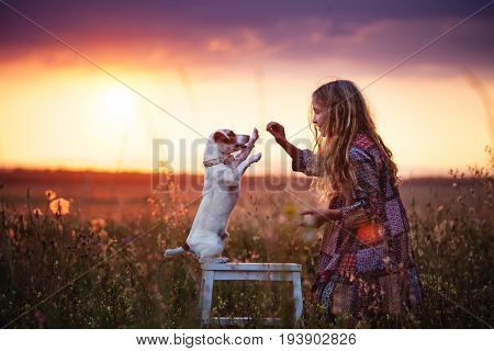 Child with dog outdoor. Girl with pet at summer