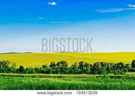 Summer rural landscape with field and hills