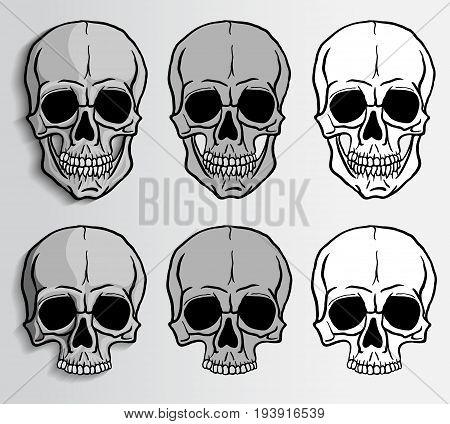 Human skulls set. Freehand drawing skulls vector illustration.