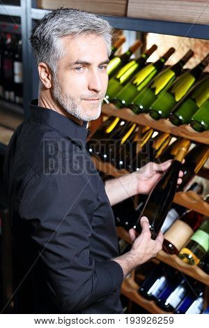 Wine cellar. Wine collection. Man chooses aging wine