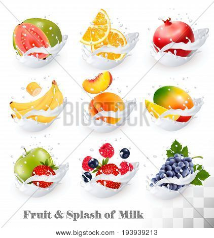 Big collection icons of fruit in a milk splash. Guava banana orange apple grapes strawberry pomegranate peach mango. Vector Set