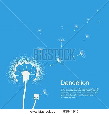 Dandelion on blue template poster with copyspace. Flower in the wind, waving gently, motion image of seeds float away. Vector flat style illustration on sky background