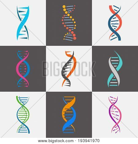 DNA strand icon. Deoxyribonucleic acid, molecule with genetic instructions, coding segment. Vector flat style illustration isolated on white and black background