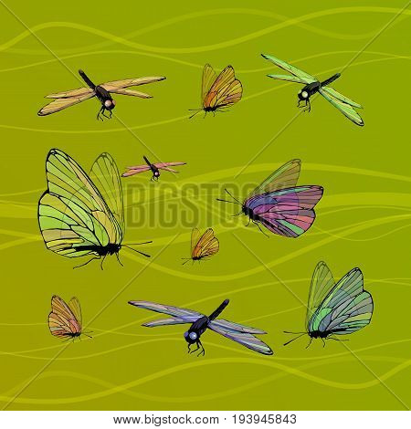 Butterfly and dragonfly with transparent wings on a green background with lines. Vector illustration of children's beautiful for your design, for printing, website, sublimation, greeting card ...