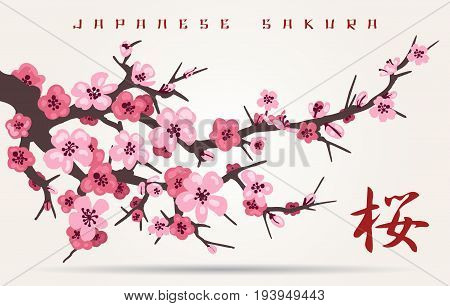 Japan cherry blossom branching tree vector illustration. Japanese invitation card with asian blossoming plum branch