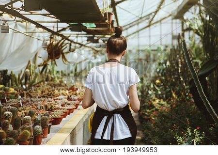 Back view image of young woman standing in greenhouse near plants.
