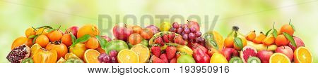 Panoramic wide photo of fresh fruits for skinali on a blurred green background.