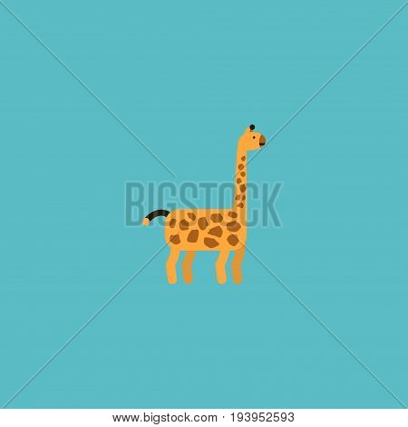 Flat Icon Giraffe Element. Vector Illustration Of Flat Icon Camelopard Isolated On Clean Background. Can Be Used As Giraffe, Camelopard And Mammal Symbols.