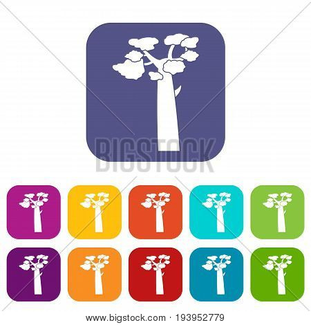 Baobab icons set vector illustration in flat style In colors red, blue, green and other