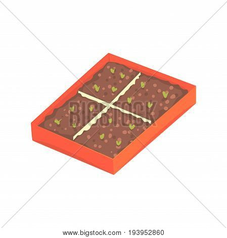 Tray of plants seedlings cartoon vector Illustration isolated on a white background