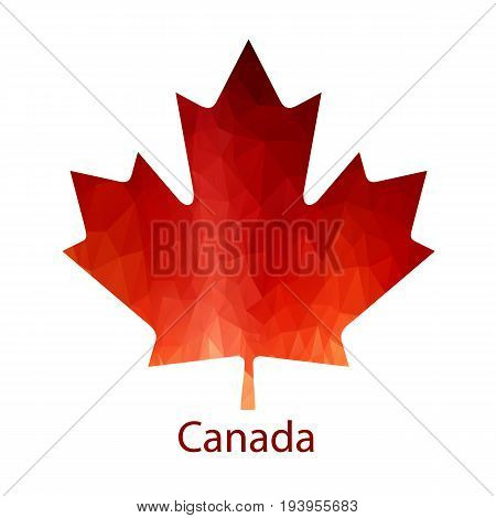 Vector Canadian Maple Leaf Icon. Simple maple leaf. Maple leaf vector icon. Canada vector symbol.