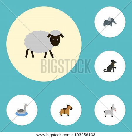 Flat Icons Waterbird, Pony, Jackass And Other Vector Elements. Set Of Zoo Flat Icons Symbols Also Includes Trunk, Jackass, Mutton Objects.