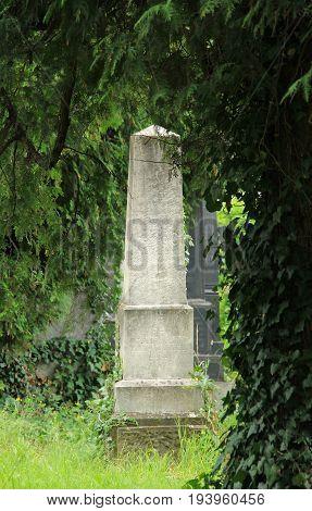 old headstone behind the trees on the jewish cemetery in Frydek-Mistek, Czech Republic, July 2, 2017
