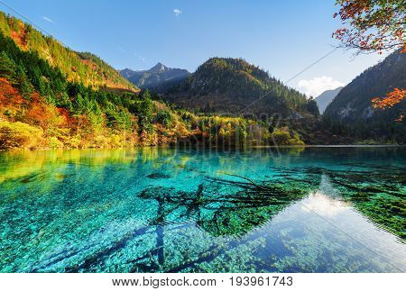 Amazing Colorful Autumn Forest Reflected In The Five Flower Lake