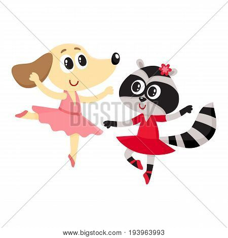 Cute little dog and raccoon, puppy and kitten characters dancing ballet together, cartoon vector illustration isolated on white background. Little raccoon and dog ballet dancers, ballerinas