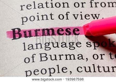 Fake Dictionary Dictionary definition of the word Burmese. including key descriptive words.
