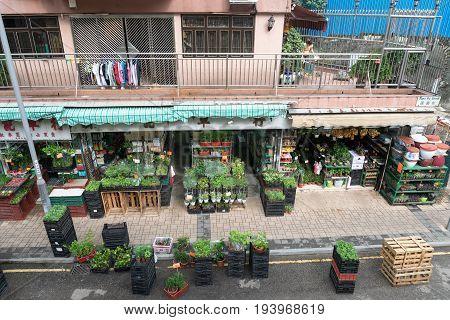KOWLOON HONG KONG - APRIL 21 2017: Nursery Plants and Florist Shops at Flowers Market in Kowloon Hong Kong.