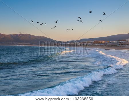 Dawn at the Beach los Lances Tarifa Andalusia Spain Europe.  a famous tourist destination