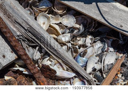 garbage with metal wood shells on bonfire site