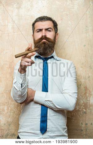 Bearded Man On Serious Face Smoking Cigar