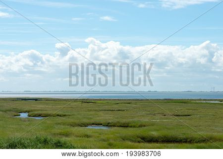 Wangerooge, Germany.  04Th July 2017:  View Of The Dunes Of The National Park Wadden Sea On The Isla