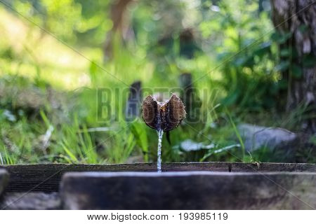 Water Source, Drinking Water, Natural Spring Water, Clear, Cold