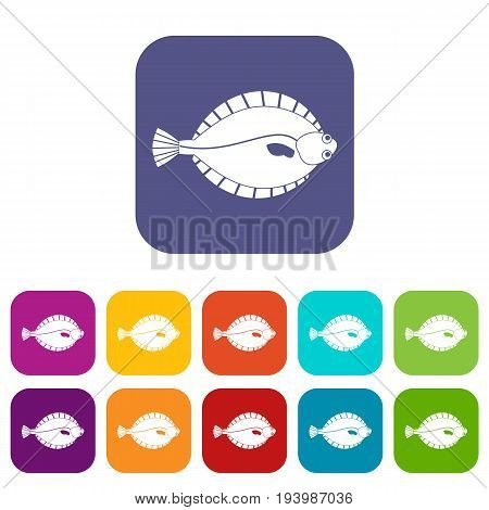 Flounder icons set vector illustration in flat style In colors red, blue, green and other
