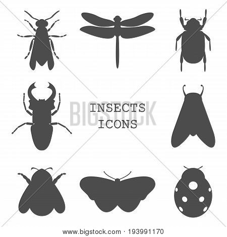 Vector illustration of insects icons black collection