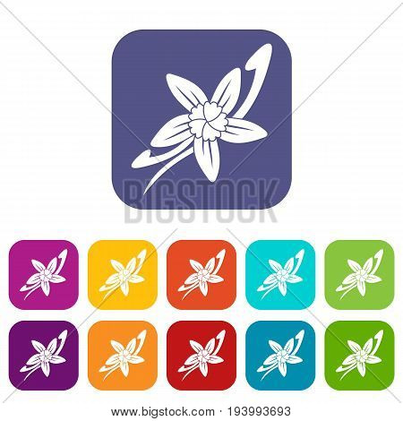 Vanilla sticks with a flower icons set vector illustration in flat style In colors red, blue, green and other