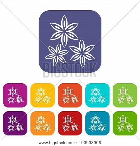 Star anise icons set vector illustration in flat style In colors red, blue, green and other