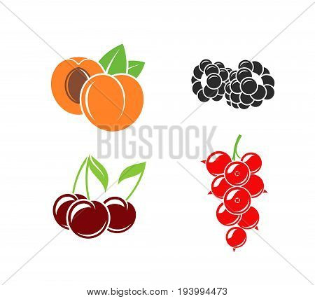 Berries and fruit on white background (EPS)