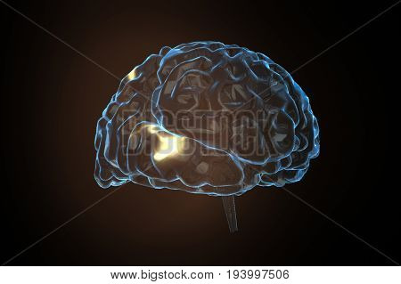 Human Brain With Neuronal Impulses. Spinning. 3D Illustration