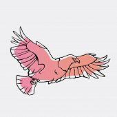 Hand-drawn pencil graphics, vulture, eagle, osprey, falcon, hawk, scavenger, condor, karkar, kite.Engraving, stencil style. Bird predator.Logo,sign,emblem,symbol Stamp,seal. Simple illustration Sketch poster