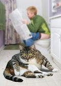 a person sitting on the toilet reading the newspaper poster