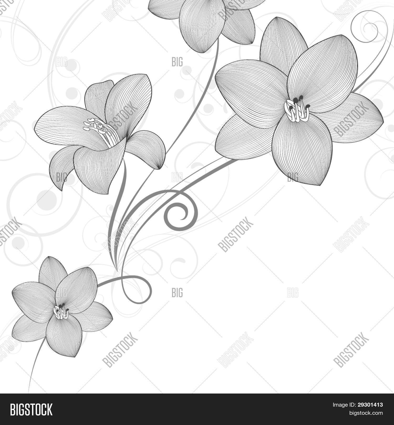 Hand,drawing Floral Vector \u0026 Photo (Free Trial)