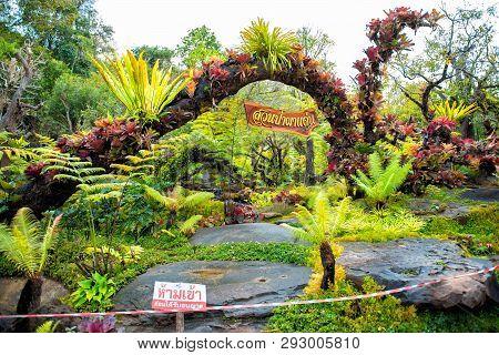 Sakon Nakhon,thailand,january 19,2019:natural Garden Exhibits At Wat Tham Pha Daen,sakon Nakhon,thai
