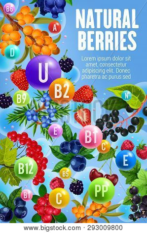 Vitamins And Minerals In Garden And Forest Berries. Vector Multivitamins Complex In Berry Fruits Che