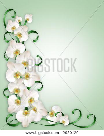 White Orchids Invitation Template