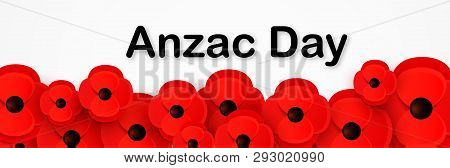 Anzac Day, Remembrance Web Header. Poppies Flowers. Memorial Banner, Card.