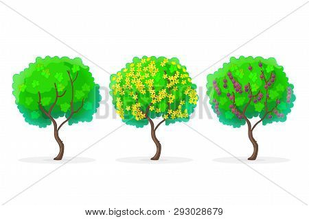 Vector Cartoon Plants Nature Clip Art. Jostaberry Bush